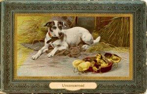 Unconcerned - Dog and Baby Chicks