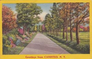 New York Greetings From Canisteo 1956