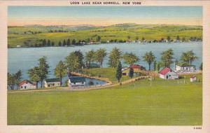 New York City Loon Lake Near Hornell