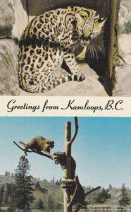 2-Views, Wildlife Park, Kamloops, British Columbia, Canada, 1940-1960s