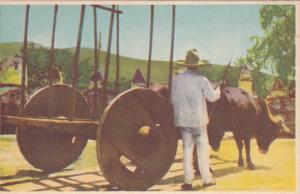 Carreta De Bueyes , Mexico , 30-40s