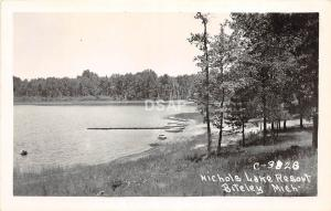 B67/ Bitely Michigan Mi Real Photo RPPC Postcard c50s Nichols Lake Resort