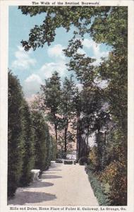 Georgia La Grange The Walk Of The Sentinel Boxwoods Hills And Dales