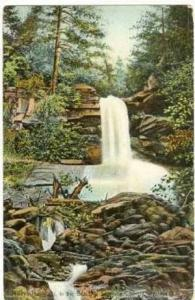 Maiden Hair Falls, In the Beautiful Sapphire Country, Western North Carolina,...