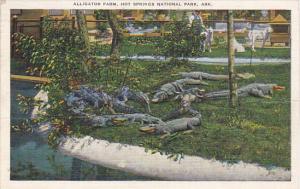 Arkansas Hot Springs Alligator Farm 1947