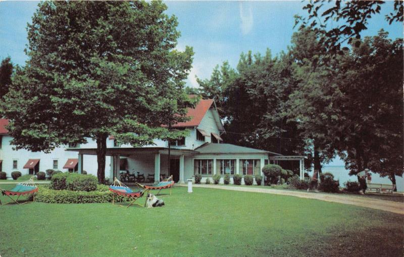 Syracuse Indiana Lake Wawasee Johnson S Hotel Hammocks Collie Dog Postcard 1960s