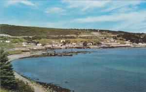 South Shore Analon Penninsula, CAPE BROYLE, Newfoundland, Canada, 40-60´