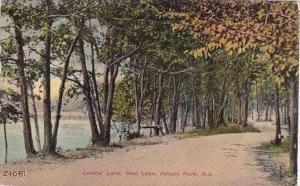 New Jersey Asbury Park Lovers Lane Deal Lake 1910