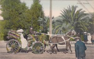 Horse- Pulled Float, Floral Parade, Los Angeles, California, 1900-10s