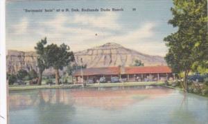 North Dakota Swimming Hole At A Badlands Dude Ranch 1946