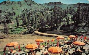 SQUAW VALLEY, CA Lake Tahoe Gondola Tramway 1960 Olympics Vintage Postcard