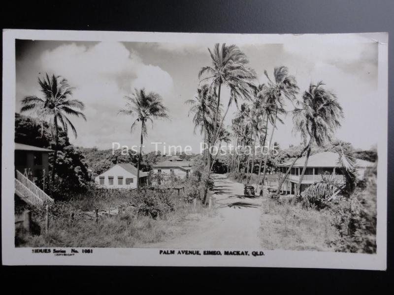 Australia EIMEO Palm Avenue MACKAY QUEENSLAND - Old RP Postcard by Sidues Series