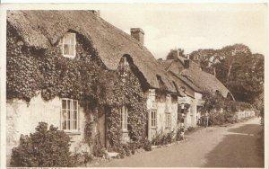 Isle of Wight Postcard - Brighstone Village - Ref TZ4018