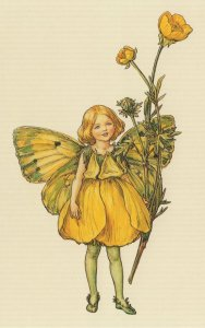 The Buttercup Flower Fairy Old Book Stunning Postcard