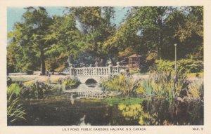 HALIFAX, Nova Scotia, Canada, 1900-1910's; Lily Pond, Public Gardens
