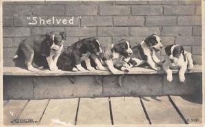 Post Card Old Vintage Antique Theater Actor Postcard test Unused
