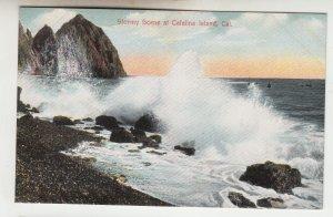 P2232 old postcard stormy scene at catalina island calf
