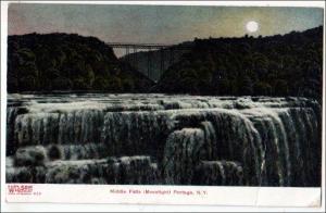 Middle Falls, Portage NY