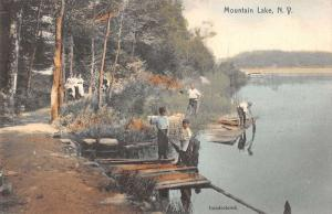 Mountain Lake New York Children At Pier Forest Walkway Antique Postcard K12636