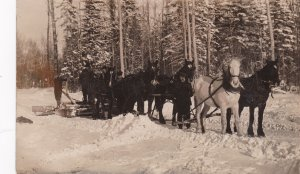 RP: NORTH BATTLEFORD , Saskatchewan , Canada , 00-10s ; Logging Sled