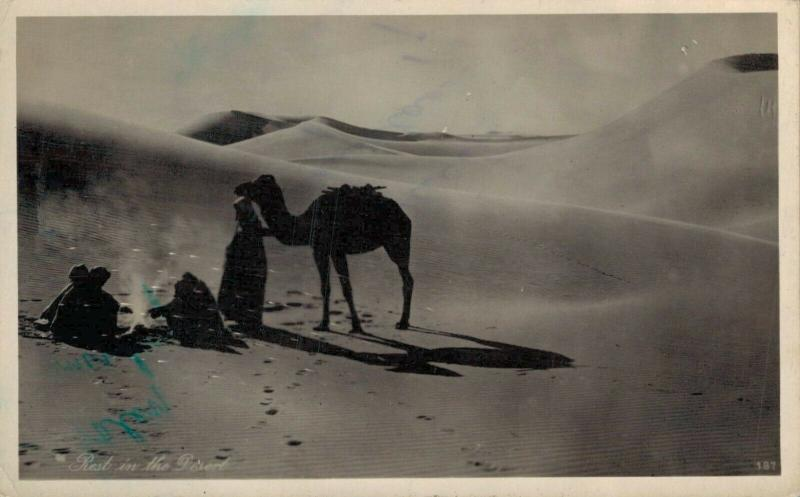 Egypt Port Said Camels 1949 02.14