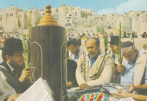 Hoshana Rabba Rabbi at Western Wailing Wall Jerusalem Postcard