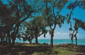 Calibogue Sound, Hilton Head Island, South Carolina, PU-1972