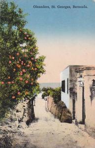 Oleanders, St. Georges, Bermuda, 00-10s
