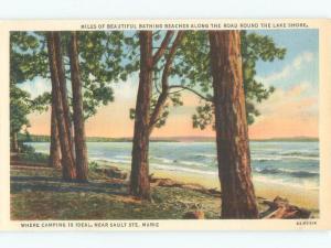 Unused Linen BEACH SCENE Sault Ste. Marie Michigan MI d7228