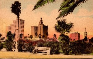 Florida Miami Skyline Oveerlooking Bayfront Park Handcolored