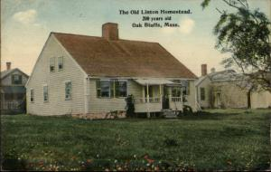 Oak Bluffs Martha's Vineyard MA Linton Hosue c1910 Postcard
