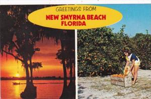 Florida Greetings From New Smyrna Beach