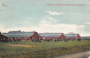 Iowa Des Moines Corral At Fort Des Moines 1909