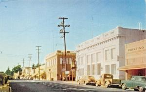 SEBASTAPOL CALIFORNIA~BUSINESS DISTRICT POSTCARD 1940-50s