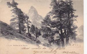 Arolles et le Cervin, Yverdon, Vaud, Switzerland, PU-1904