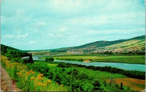 Margaree Valley Cape Breton NS Canada Postcard used 1957