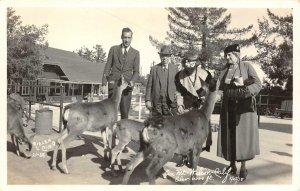 RPPC Feeding Deer on Mount Wilson, CA Nielen Photo 1938 Vintage Postcard