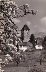 Switzerland Schloss Spiez Am Thunersee Photo
