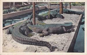 Alligator Farm at South Jacksonville FL, Florida - WB