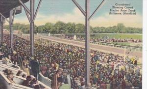 Maryland Baltimore Pimlico Race Track Grandstand Showing Crowd Curteich