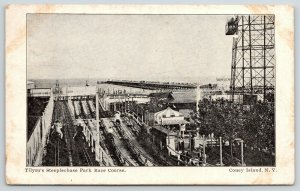 Coney Island~Punch & Judy~Tilyou Steeplechase Riders Backside~Skybox Tower~1906