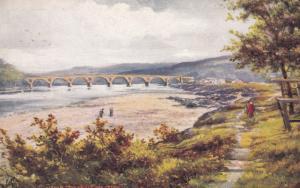 HEXHAM , England , 1900-10s ; Tyne Bridge & Green ; TUCK 7027