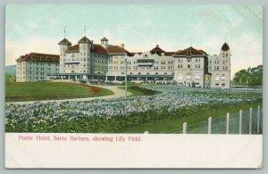 Santa Barbara California~Potter Hotel~Lily Field~Horse & Buggies~c1900s