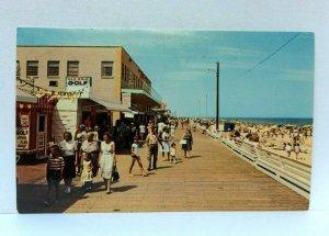 Rehoboth Beach Delaware Beach & Boardwalk Postcard