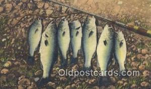 Ozarks, USA Postcard Post Cards Old Vintage Antique Ozarks, USA Postcard, Pos...