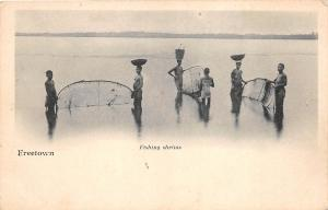 B84971 freetown fishing shrims types folklore sierra leone