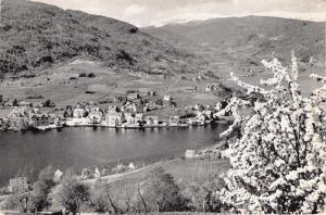 NORHEIMSUND HARDANGER NORWAY NORGE PANARAMA TOTAL VISNING POSTCARD 1940s