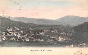 Bird's Eye View Margaretville, New York Postcard