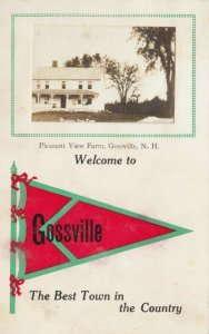 RP; GOSSVILLE , New Hampshire , 1913 ; Pleasant View Farm