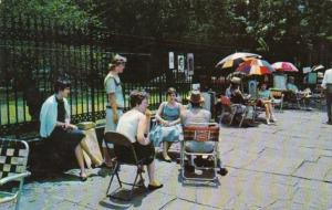 Louisiana New Orleans Jackson Square  Sidewalk Artists